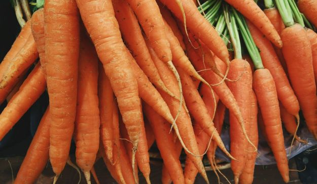 crisp fresh carrots